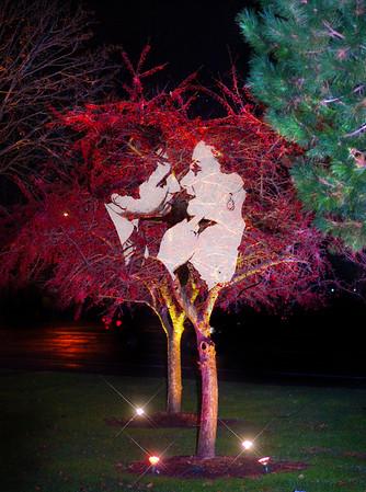 Virginia & James, Engagement Photography by Mariana Roberts