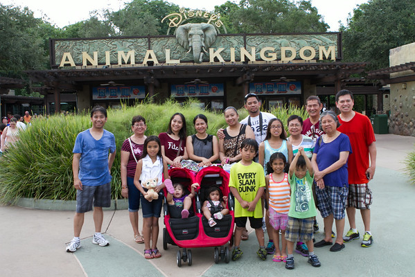 Animal Kingdom 2014