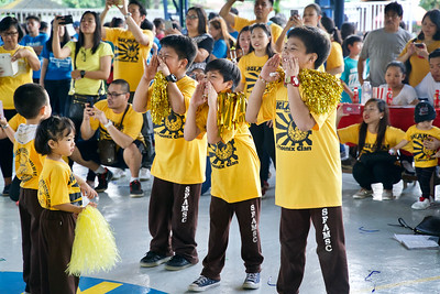 Sun Phoenix Preschool to Grade 3 Cheer 2018-2019