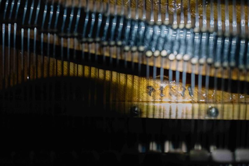 Vleugel-Bechstein-date (4 van 5).jpg