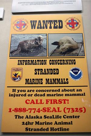 AK Marine Mammal Stranding Network - 7-24-07