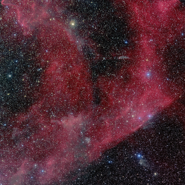 Cometary Globules in Puppis
