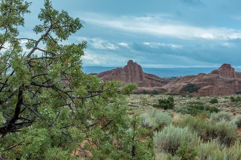 Utah Day 6-64.jpg