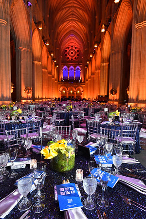 AIA  Gala / National Cathedral