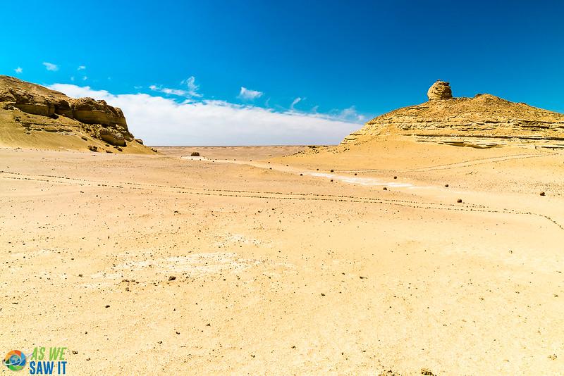 Wadi-El-Hitaan-02381.jpg