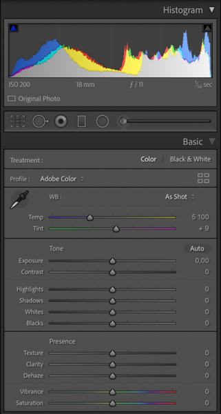 Basic Module with the Texture Slider and the Adobe Color Profile selected