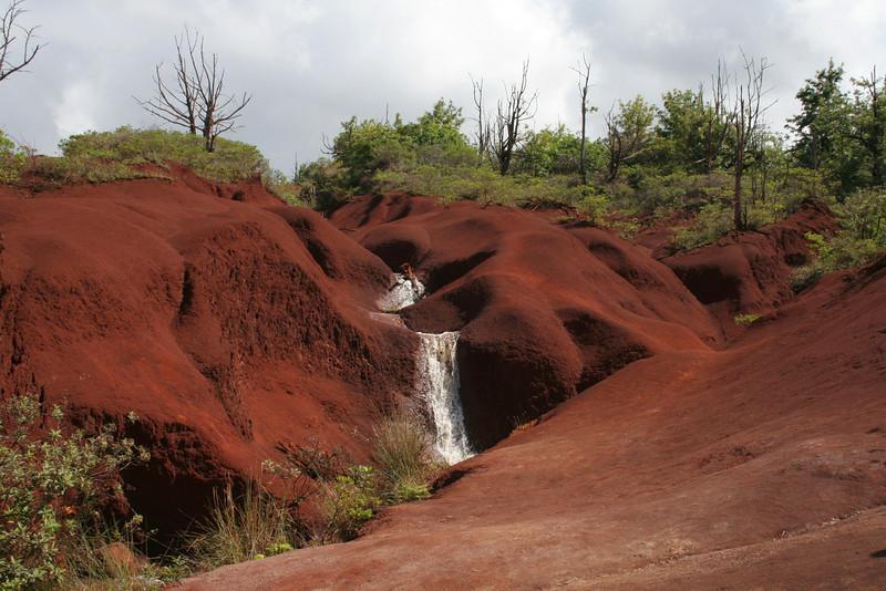 4090 Kauai Red Dirt.jpg