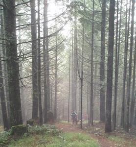 Iris Meadow Scott's run Nov'09