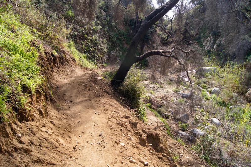 201201291649-El Prieto Trailwork.jpg