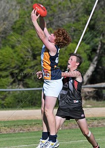 Junior Colts - R6 - Padthaway-Lucindale