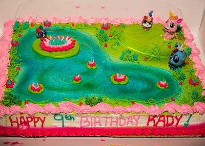 Kady's 9th Birthday Party