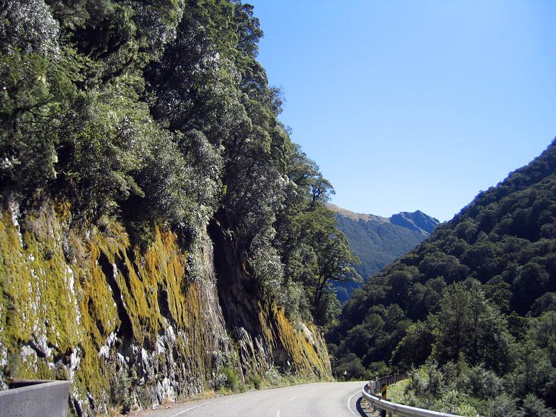 New Zealand 270.jpg