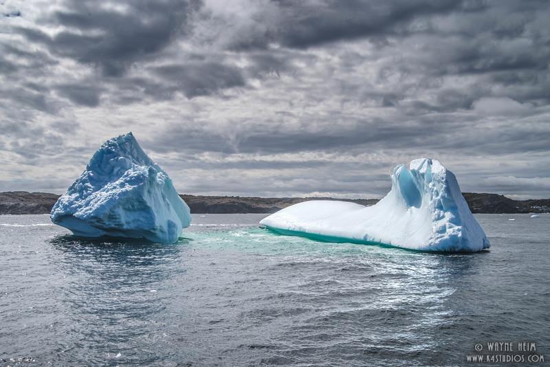 Iceberg   11    Photography by Wayne Heim