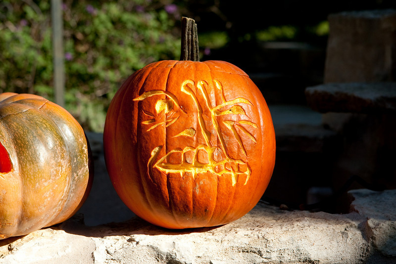 Pumpkins_2009-9211.jpg