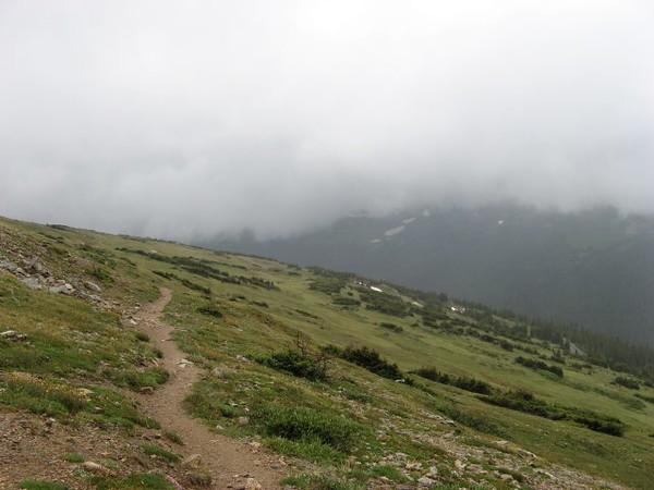 forestcanyonpass.jpg