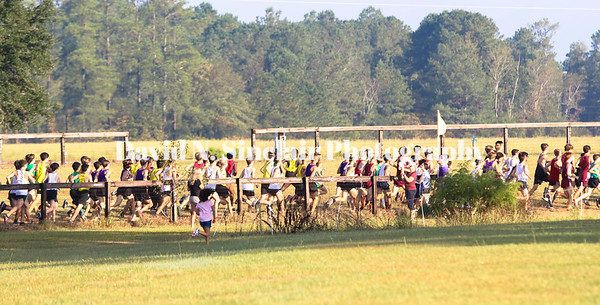 Pinecrest Cross Country