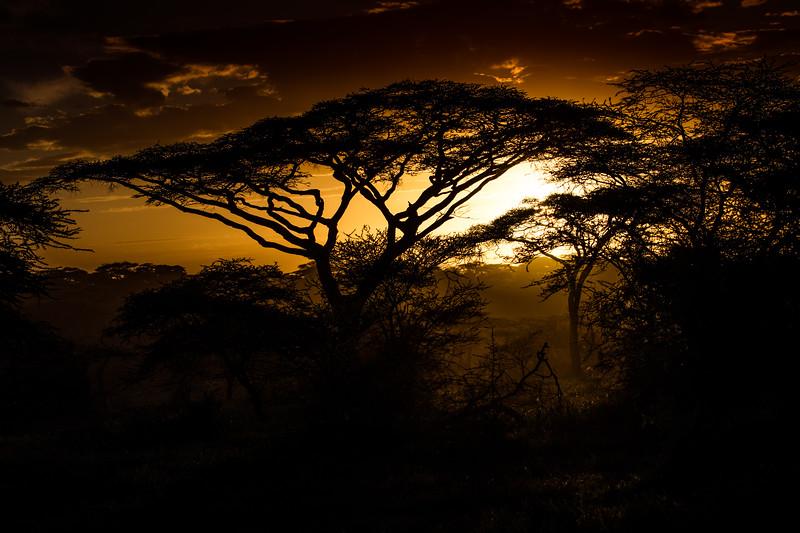Tanzania_Feb_2018-198.jpg