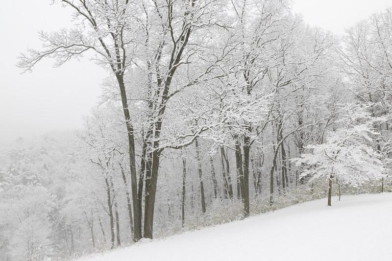 Pennsylvania Snowstorm