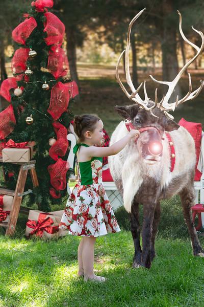 Christmas Photo (4).jpg