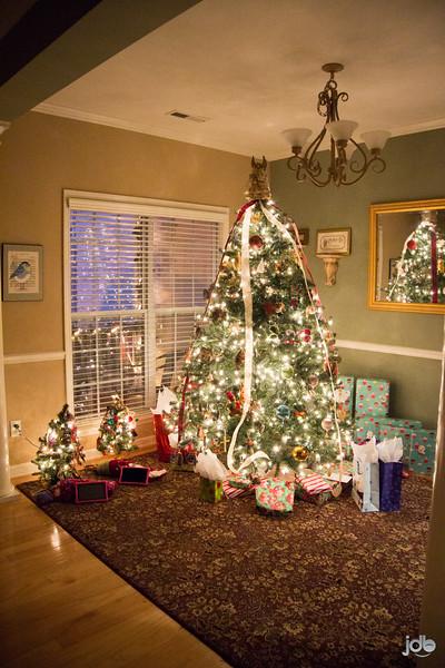 Harrell Christmas '15 (2 of 18).jpg