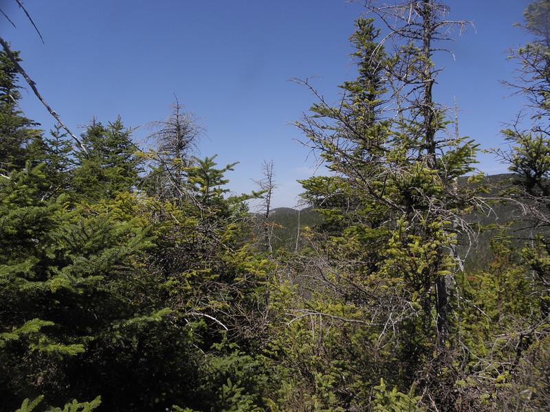 A little peek at W Huntington's peak.JPG