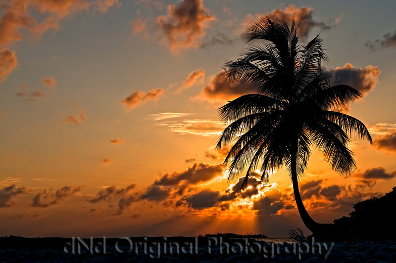 096 Bahamas 2008 - 2nd Sunrise (nik pro contrast).jpg