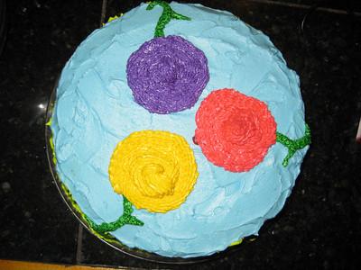 Ezra's 3rd Birthday