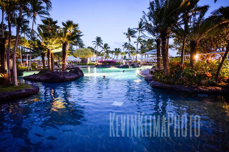 Kauai2017-019.jpg