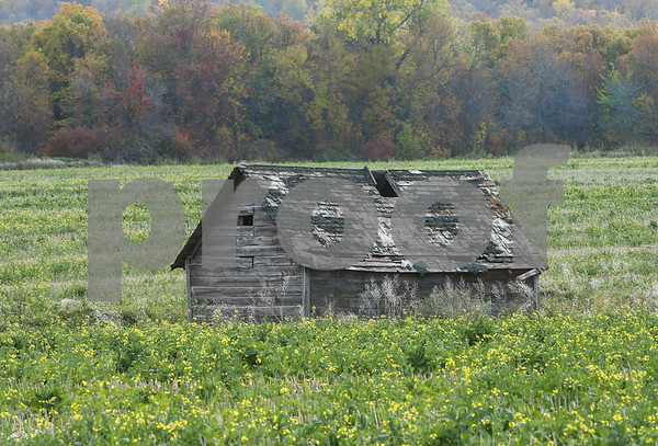 summer barns/ old houses