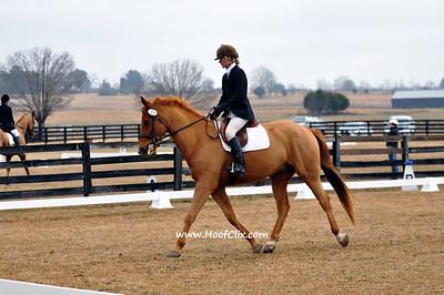 2010-02-03 USEA Horse Trial
