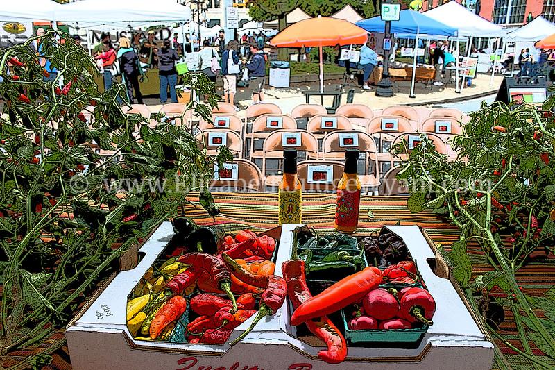 Chile Pepper Festival 2013