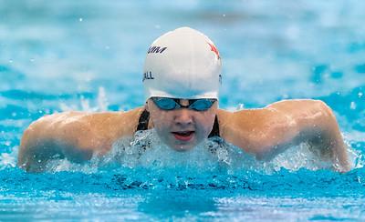 Etobicoke Swim Club