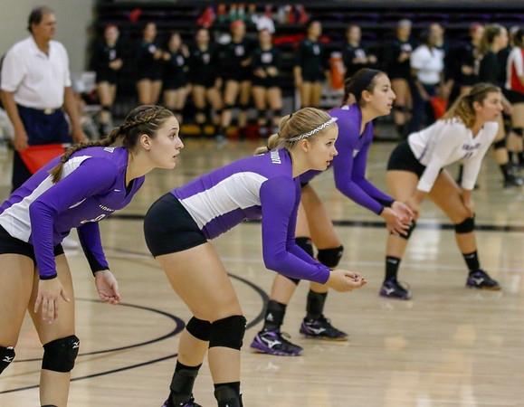 Mount Union VolleyBall