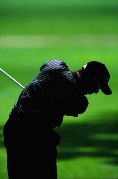 golfer(72dpi).jpg
