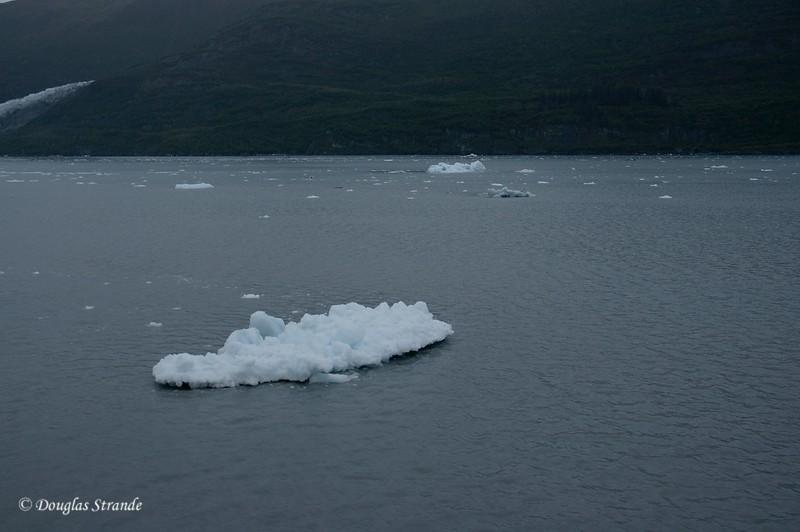 0509040711_Icebergs.jpg
