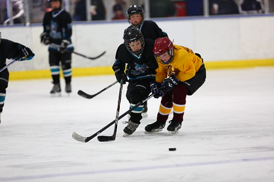 GAME14-SQUIRT-CANAL-WEYMOUTH