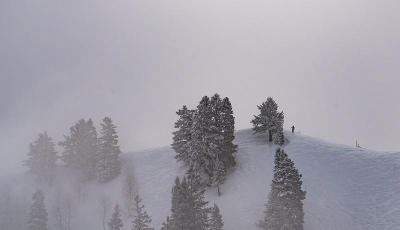 Sundance-8.jpg