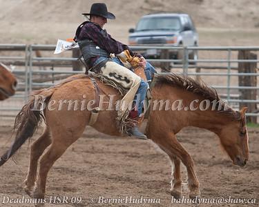 Deadmans Creek HSR 2009