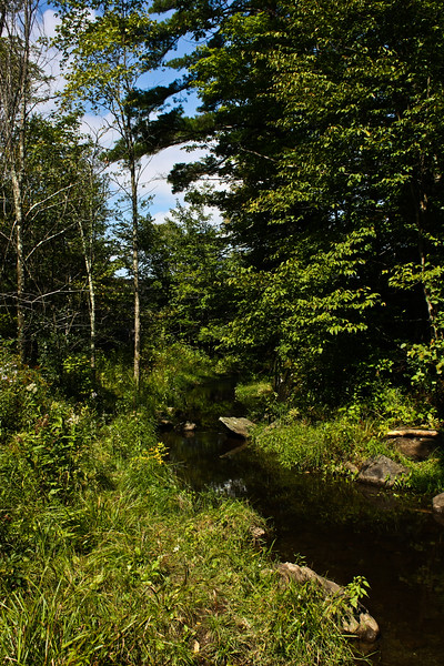 Indian Brook Reservoir