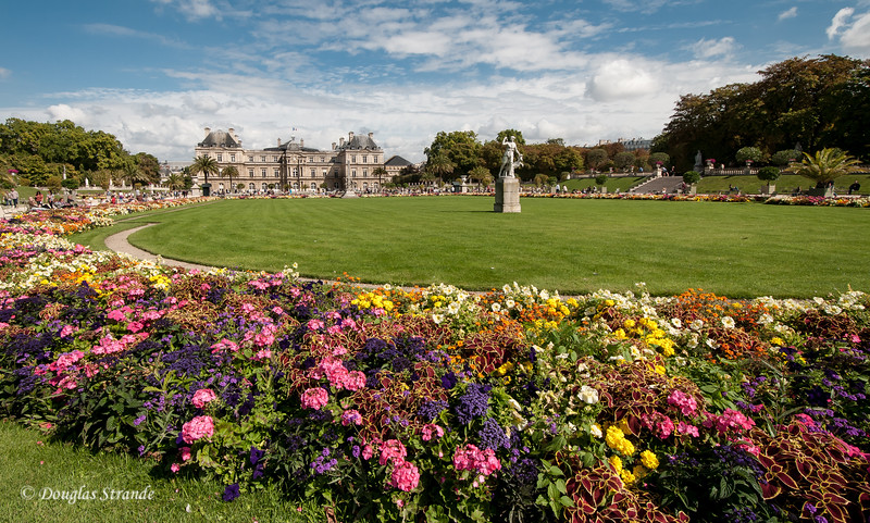 Flowers in Luxembourg Garden, with the Luxembourg Palace in the distance.