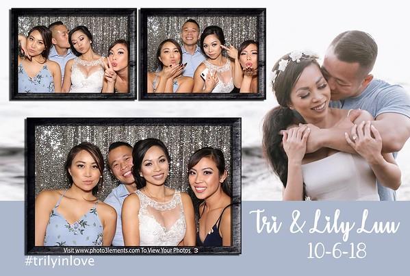 Tri and Lily Luu 2018