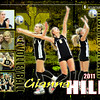Gianna_Hill_IM_Volleyball_Poster_2011_rev2