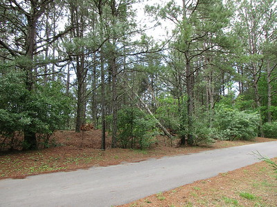 Trees Down 5-6-2017 Lot 13 Highland Woods