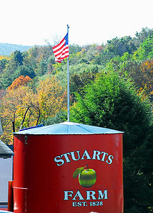 Stuart Farms - Apple pickin'