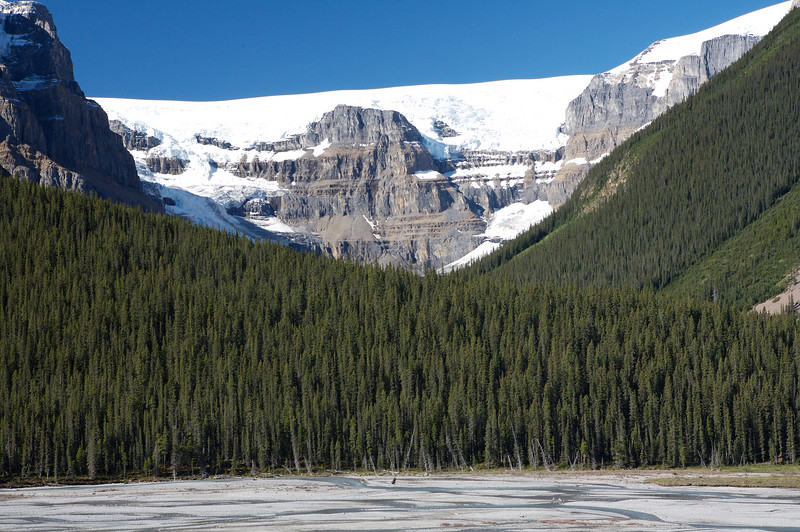 On the road near Columbia Icefields