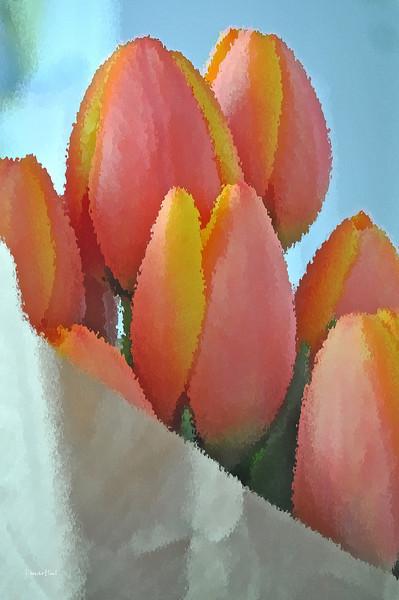 easter tulips 2 4-12-2012.jpg
