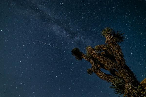 Perseid Meteor Shower at Joshua Tree 8-12-16