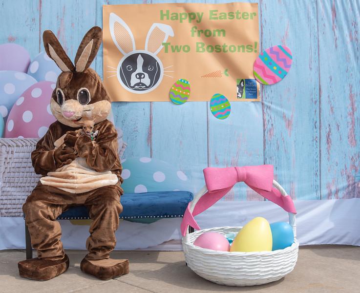 Easter2019TwoBostons-8286.jpg