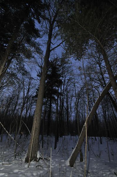 2012-12-29 2012 Christmas in Mora 100.JPG