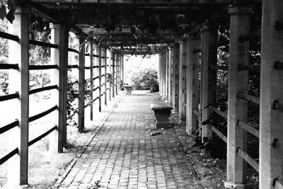 2004-06 Dumbarton Oaks